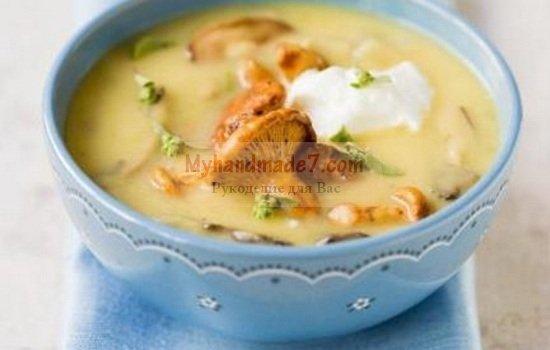 Суп-пюре с грибами. Лучшие рецепты