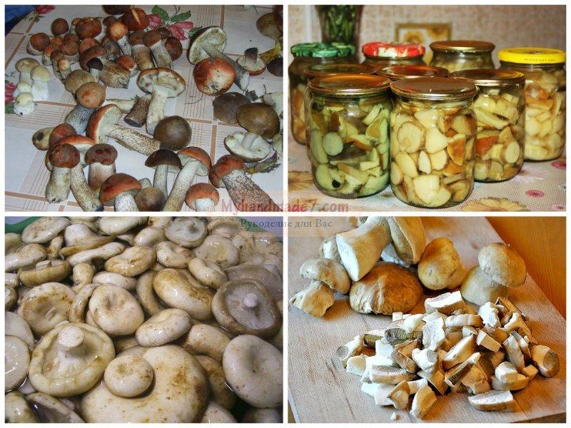 как мариновать белый гриб рецепт