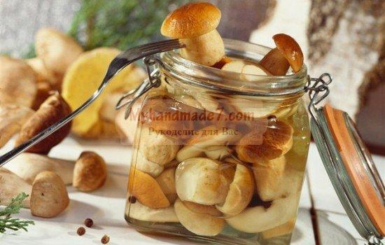 грибы маринованные на зиму: лучшие рецепты с фото