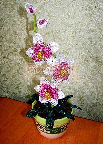 Орхидея из бисера: лучший мастер класс