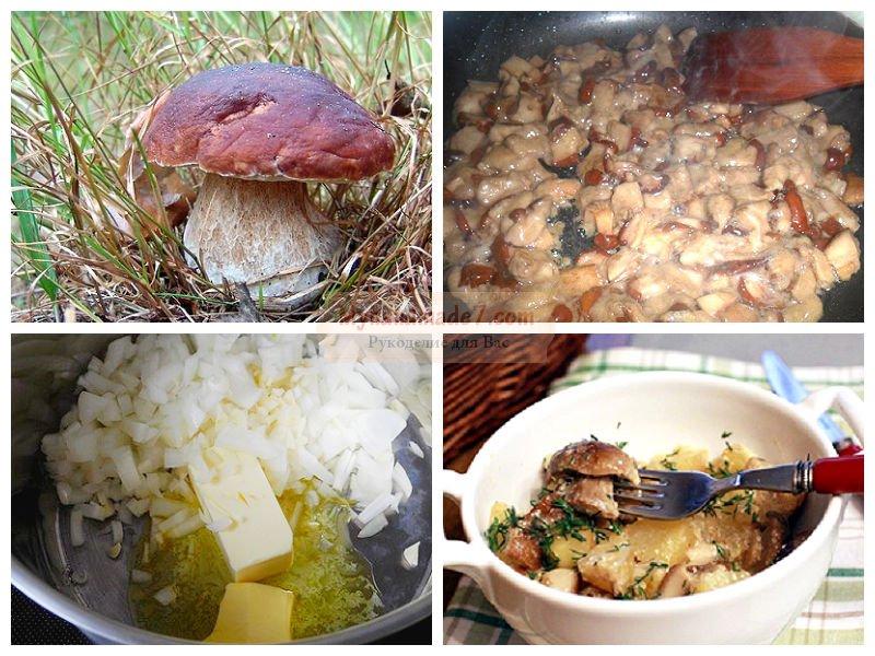 что можно приготовить из белых грибов видео