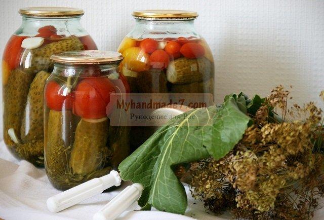 Засолка огурцов на зиму: популярные рецепты с фото