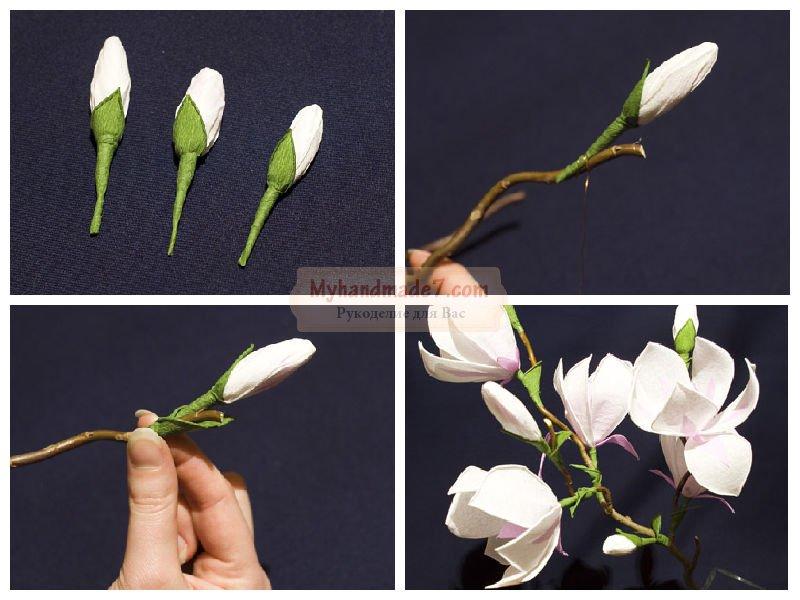 Гофрированные цветы своими руками мастер класс