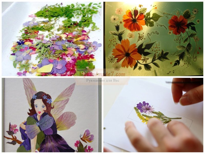 Картины из листьев: лучшие идеи с фото