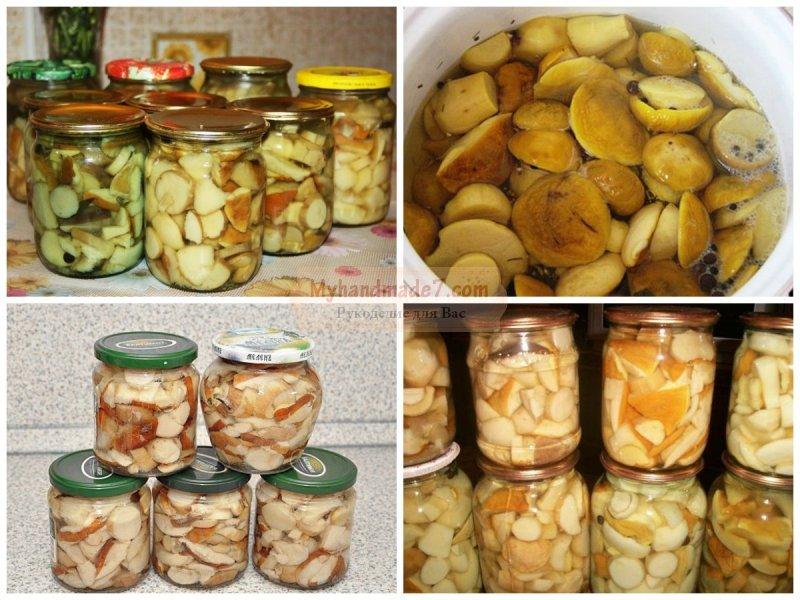 Маринованные белые грибы на зиму: золотые рецепты с фото