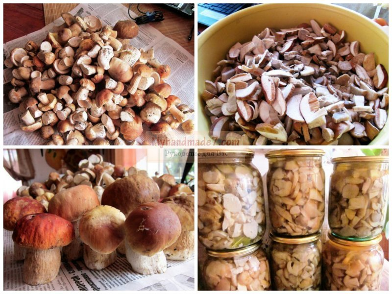 Соленые грибы пошаговый рецепт с картинками