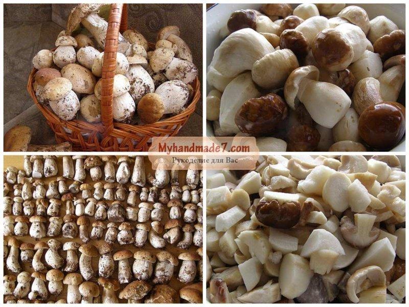 Соленые грибы в банках: бесподобные рецепты с фото