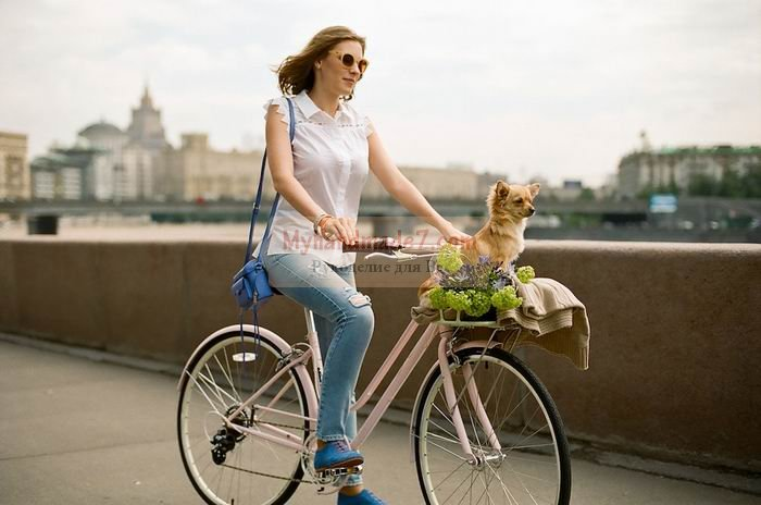 Женский велосипед. Все тонкости выбора