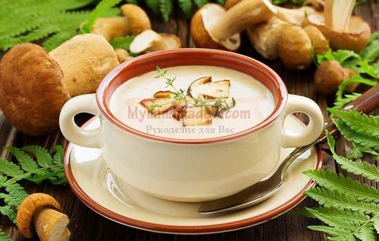 Суп из белых грибов: пошаговые рецепты с фото